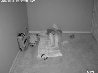 Torrid cougar caught on covert security camera